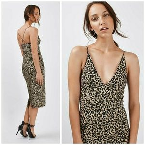 NWT, Topshop Leopard Print Bodycon Dress